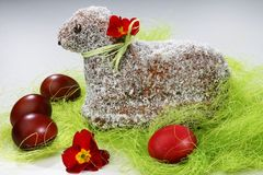 Lamb coconut cake Royalty Free Stock Photo