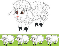 Lamb color 01 Stock Photo