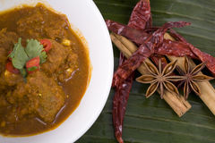 Lamb Curry. With dried chilies and star anise and Cinnamon spices Stock Image