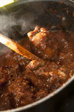 Lamb curry cooking Royalty Free Stock Photography