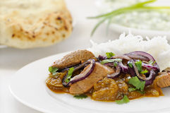 Lamb curry with rice Stock Photos