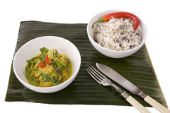 Lamb Curry and Rice Stock Images