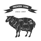 Lamb cuts for butcher shop poster Royalty Free Stock Images