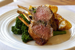Lamb Dinner Royalty Free Stock Photos