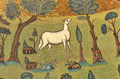 Lamb of god. The lamb of God in a UNESCO listed mosaic 1500 years old Stock Photography