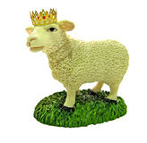 The lamb of God and king Christ Jesus. Photo of lamb wearing golden crown symbolising Christ Jesus as lamb of God and reigning king Royalty Free Stock Photos