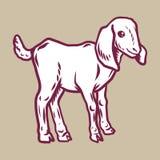 Lamb icon, hand drawn style royalty free illustration