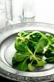 Lamb Lettuce Salad Royalty Free Stock Image