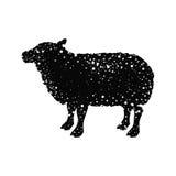 Lamb livestock animal design Royalty Free Stock Photography
