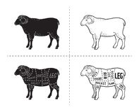 Lamb or mutton cuts diagram. Butcher shop. Vector illustration Royalty Free Stock Photos
