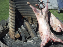 Lamb over pit fire Royalty Free Stock Images