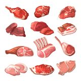 Lamb, pork beef, and other meat pictures in cartoon style Stock Image