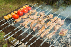Lamb ribs barbequed on a skewer Stock Photos