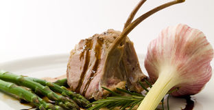 Lamb. Stock Photography