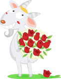 A lamb with roses. An illustration of a lamb holding a bunch of red roses Stock Photography