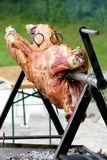 Lamb rotisserie Royalty Free Stock Photos