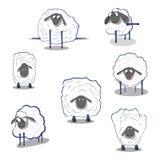 Lamb sheep icons Stock Photo