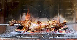 Lamb spinning on spit stock footage
