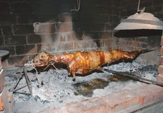 Lamb on a spit Stock Images