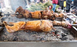 Lamb on a spit Royalty Free Stock Photos