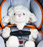 Lamb is tied to the seat. Royalty Free Stock Image