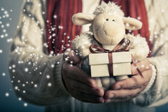 Lamb toy and christmas gift. Christmas and New Year concept. Hands holdimg small  magic gift box and soft toy Stock Image