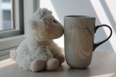 Lamb toy with cup sitting by the window in shadows.  stock photo
