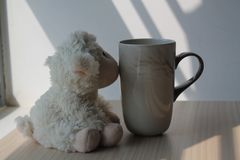Lamb toy with cup sitting by the window in shadows.  royalty free stock photo