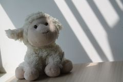 Lamb toy sitting by the window in shadows Royalty Free Stock Photography