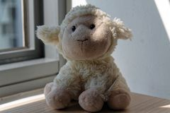 Lamb toy sitting by the window in shadows. Lamb sheep and penguin toy sitting by the window in shadows stock photography