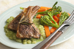 Lamb with vegetables Stock Photography