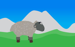 Lamb Walks, Eats the Grass. EPS10. Royalty Free Stock Photo