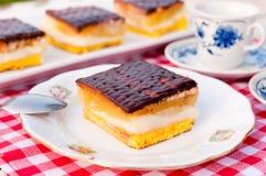 Lambada cake Stock Image