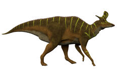Lambeosaurus Side Profile Stock Image