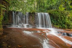 Free Lambir Hills Stream, In Miri Stock Photos - 114278163