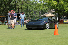 Lambo driving on lawn Stock Image