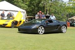Lambo driving on lawn Royalty Free Stock Photo