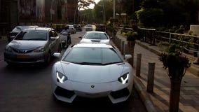 Lamborghini公牛上帝 免版税库存照片