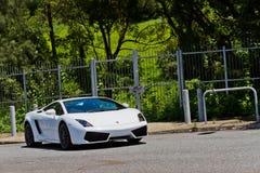 Lamborghini lp560-2 έξοχο πρότυπο αυτοκινήτων 2013 Στοκ Φωτογραφία