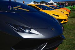 Lamborhini Huracan. Lamborghini Huracans lined up at the 2015 Concoso Italiano stock images