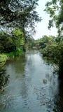 Lambourn河 库存照片