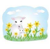 lambs ängen vektor illustrationer