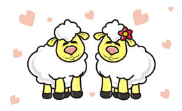Lambs couples in love Royalty Free Stock Photography
