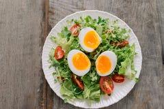 Lambs lettuce salad, hard-boiled eggs, tomatoes and honey mustard dressing.  stock photo