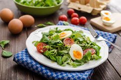Lambs lettuce salad, hard-boiled eggs Royalty Free Stock Image