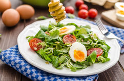 Lambs lettuce salad, hard-boiled eggs Royalty Free Stock Photo