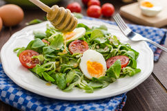 Lambs lettuce salad, hard-boiled eggs Royalty Free Stock Photography