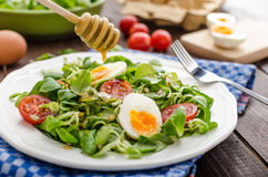 Lambs lettuce salad, hard-boiled eggs Stock Photography