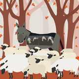 Lambs in pockets. Lamb in pockets of severe surrounded by a flock of sheep. In the background trees Stock Photos