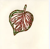 Lame d'automne en les verts et le rouge Photographie stock libre de droits